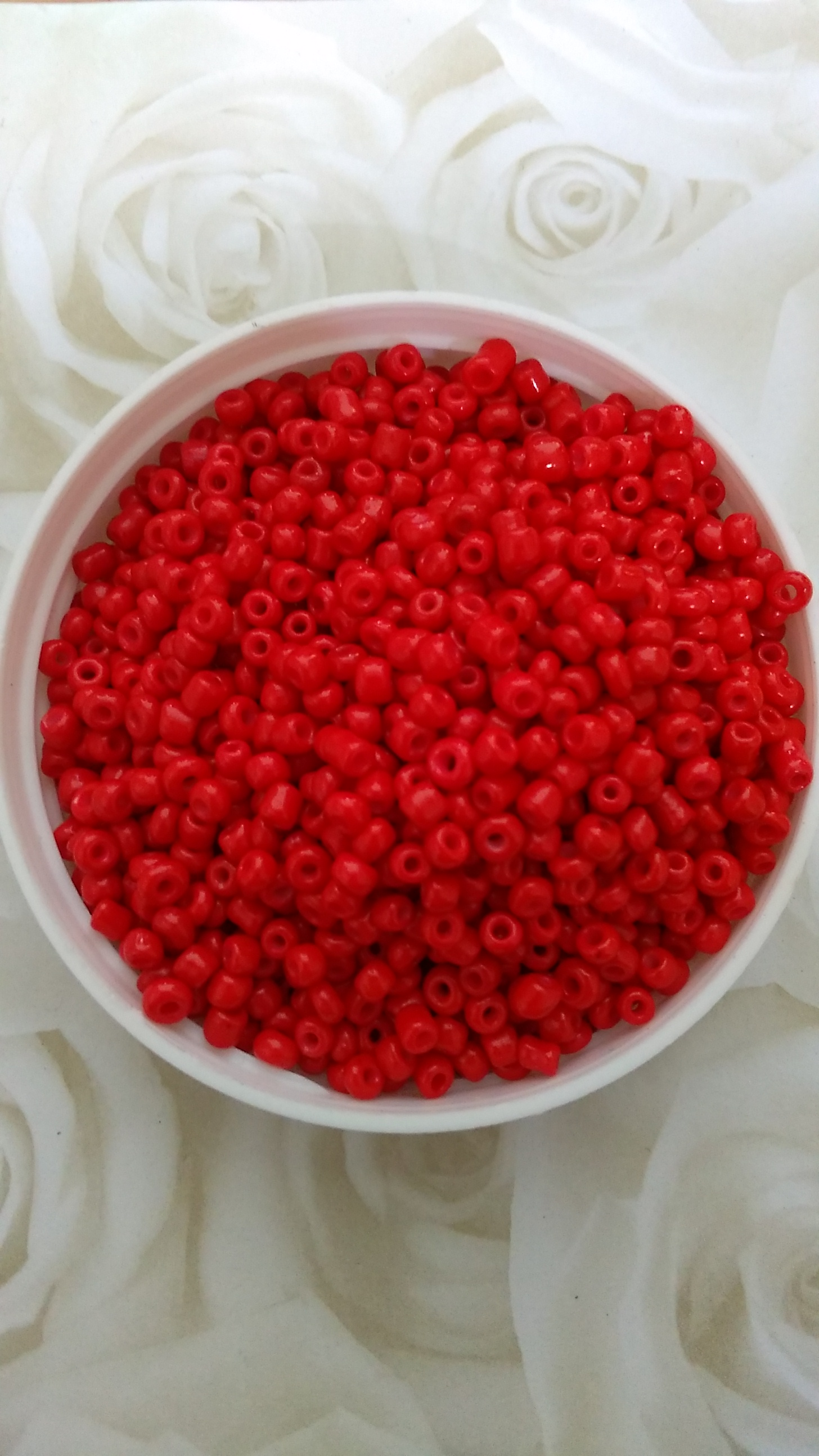 Bright Red 8/0 Seed Beads